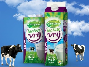 Campina lactosevrij